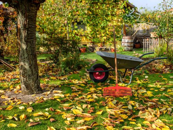 Gartenarbeit im Oktober Gartensaison noch nicht beendet sich an die Arbeit machen Laub sammeln Gartenkarre