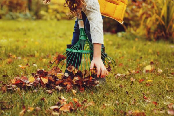 Gartenarbeit im Oktober sich um den Rasen kümmern abgefallenes Laub sammeln