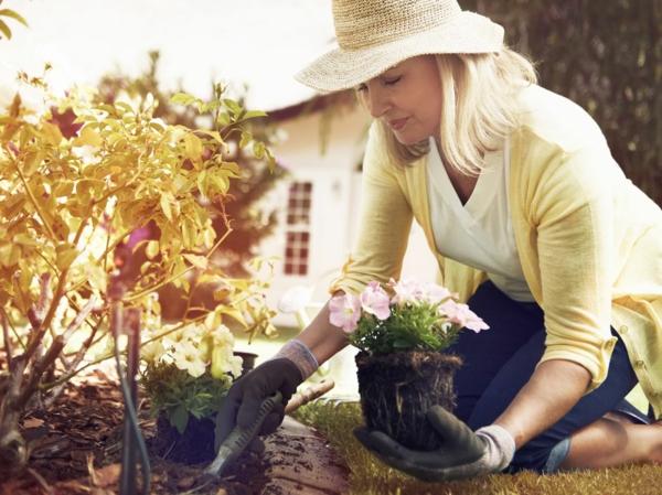 Gartenarbeit pflegeleichte Pflanzen Tipps