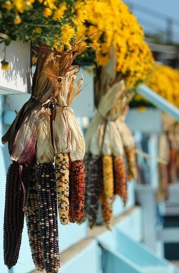 Herbstdeko-Ideen mit Mais natürliche Schönheit