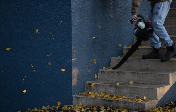 Herbstputz im Heim und Garten – natürliche Putzmittel und Checkliste blätter gehwege treppen rechen