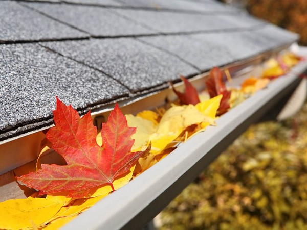 Herbstputz im Heim und Garten – natürliche Putzmittel und Checkliste dachrinnen reinigen