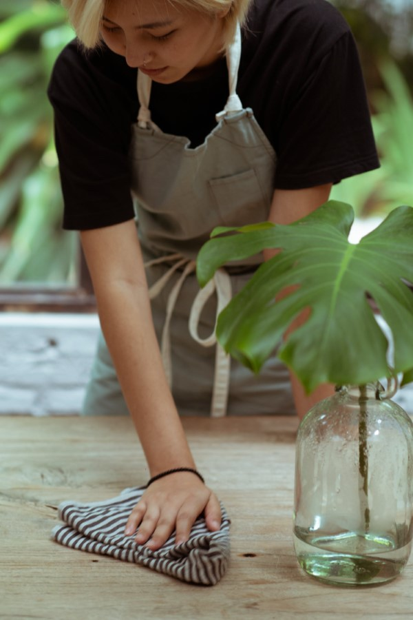 Herbstputz im Heim und Garten – natürliche Putzmittel und Checkliste garten pflege winterfest