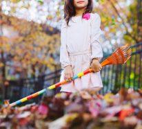 Herbstputz im Heim und Garten – natürliche Putzmittel und Checkliste