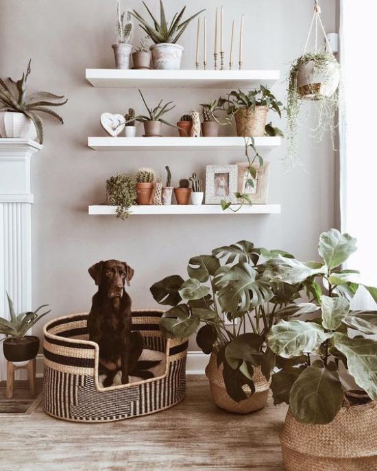 Hundebetten Flechtkorb elegantes Modell im Einklang mit der gesamten Raumeinrichtung Regal Blumen Topfsäcke aus Hanf