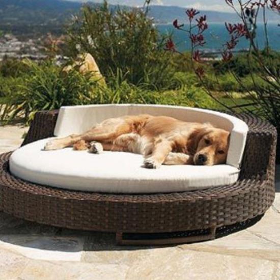Hundebetten Korbmöbel für Hunde elegantes Modell für draußen ein echter Blickfang