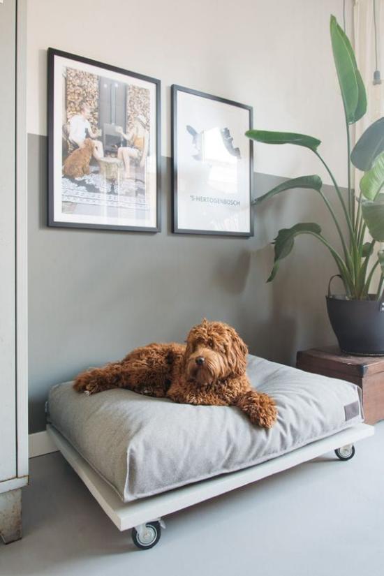 Hundebetten einfaches Modell auf Rollen sehr praktisch kann man leicht umstellen