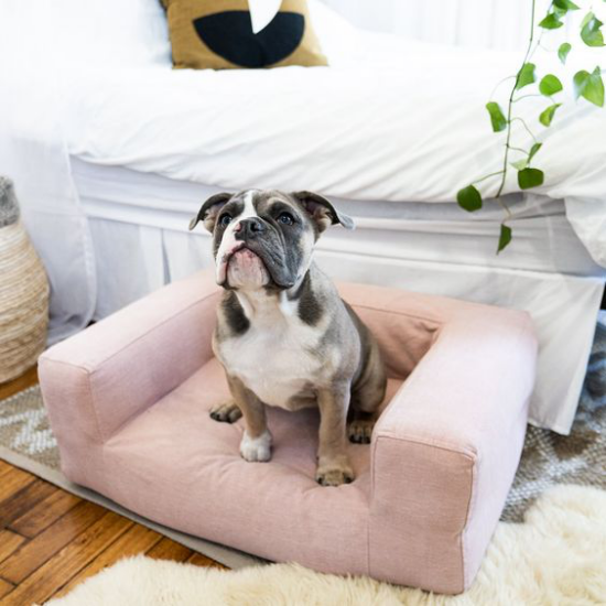 Hundebetten schickes Modell rosa Sessel Stoff wasserfest kratz-und bissfest