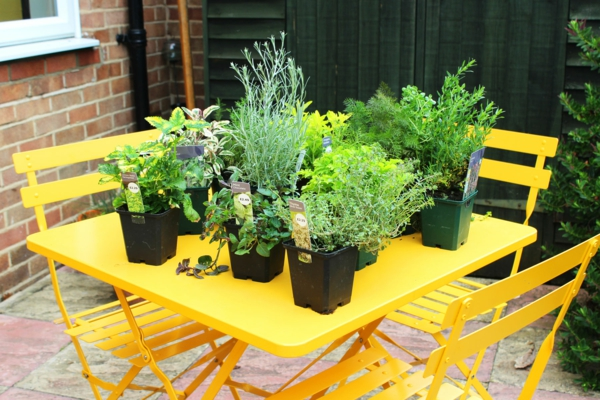 Crie um jardim de ervas na mesa amarela de balde