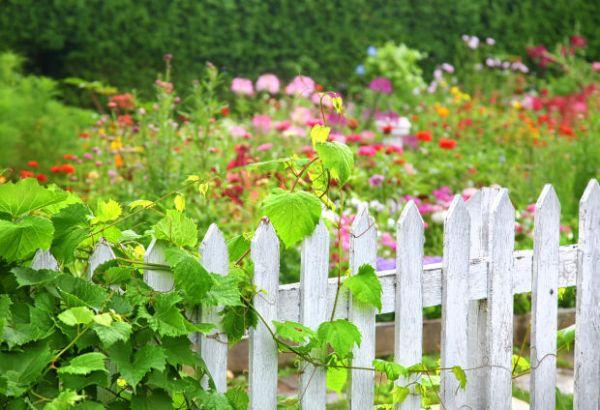Naturgarten schöne moderne Gartengestaltung