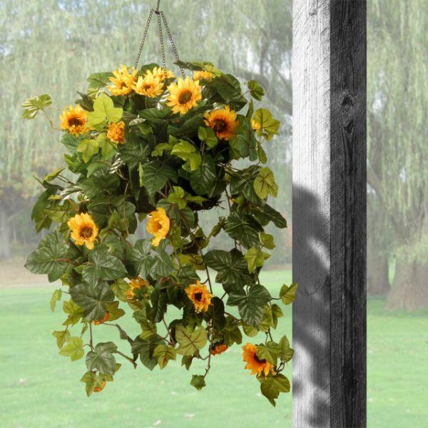 Pflanzenampel voller Sonnenblumen