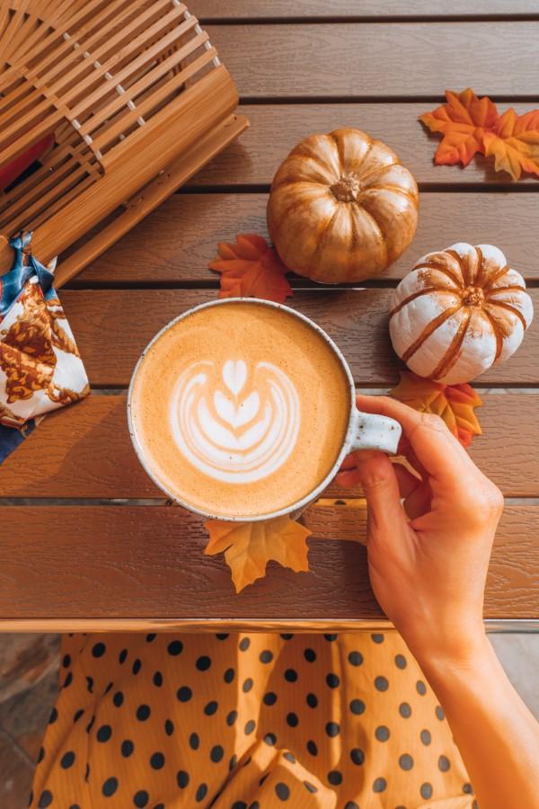 Pumpkin Spice Latte – köstliche Rezeptideen mit Kürbisgewürz lecker einfach aromatisch