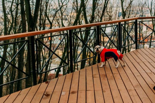 Geländer für Veranda und Co. – kurze Kaufberatung für Hausbesitzer metall geländer schwarz holz