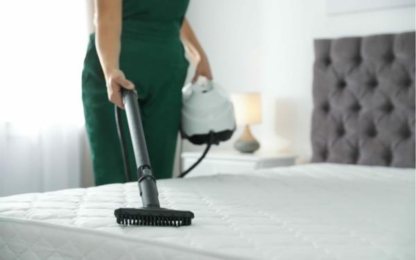 Was tun gegen Bettwanzen Bett staubsaugen