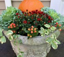 Herbstbepflanzung für Kübel – Welche Kombinationen sind möglich?