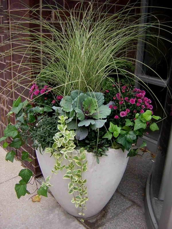 herbstbepflanzung balkon große kübelbepflanzung