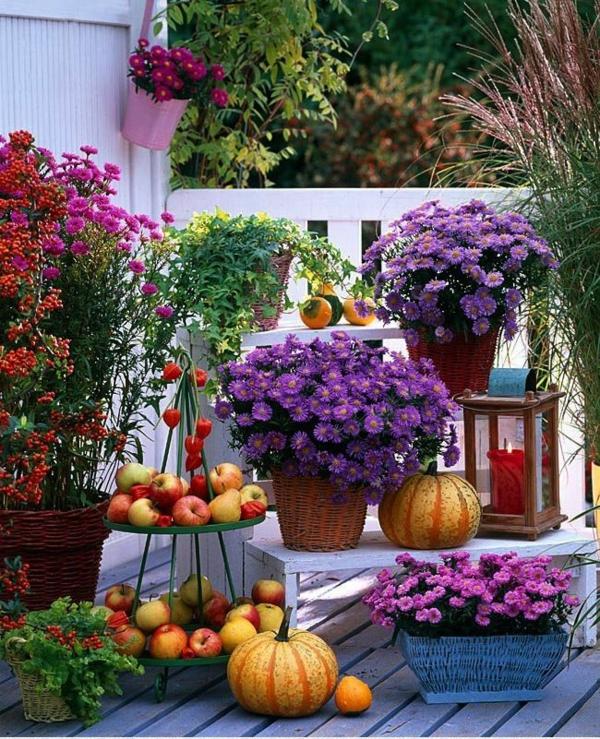 herbstbepflanzung balkon kreative dekoideen blumen äpfel