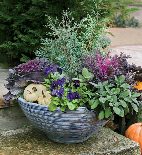 herbstbepflanzung frische kombinationen schöne herbstdeko ideen