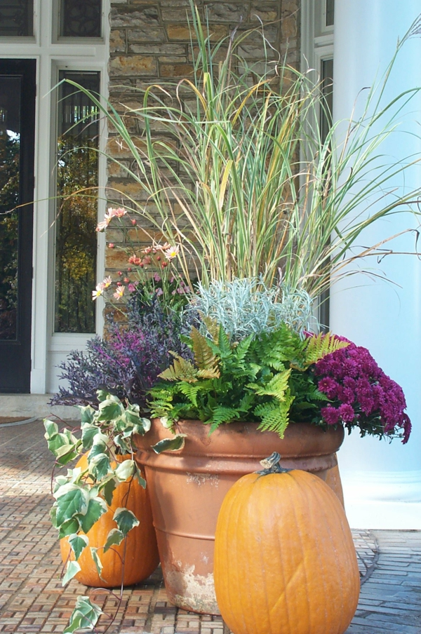 herbstbepflanzung schönes arrangement kübelpflanzen