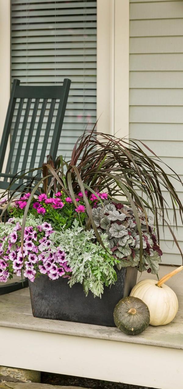 herbstbepflanzung stufenweise gestaltet terrasse dekoideen