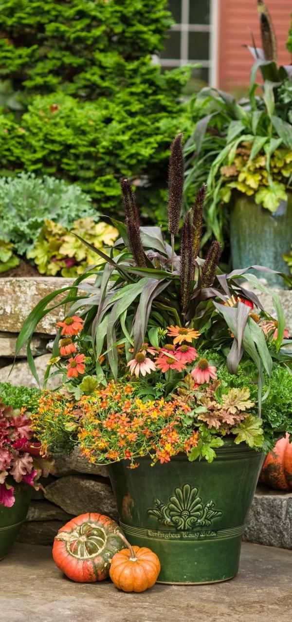 herbstbepflanzung terrasse kübel schöne dekoideen
