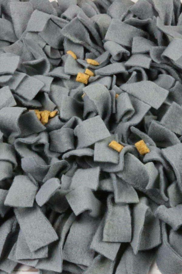 hudespielzeug schnüffelteppich selber machen mit leckerlis