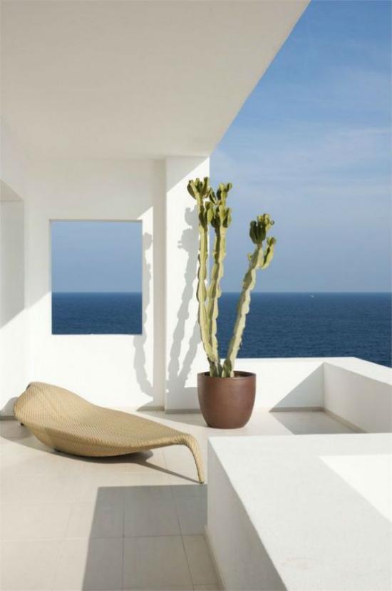 minimalistische Terrassengestaltung ganz in Weiß ausgefallene Liege großer Topf mit hohen Sukkulenten Blickfang