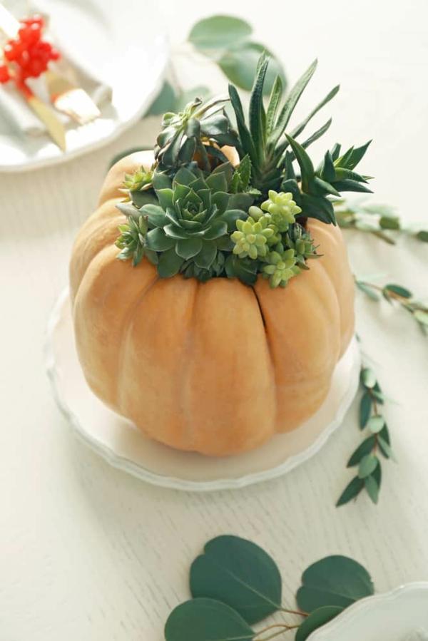 natürliche Deko-Ideen Herbst Vase aus Kürbis basteln