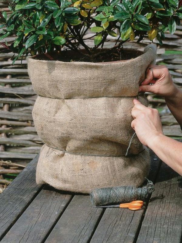 pflanzen überwintern töpfe passend schützen