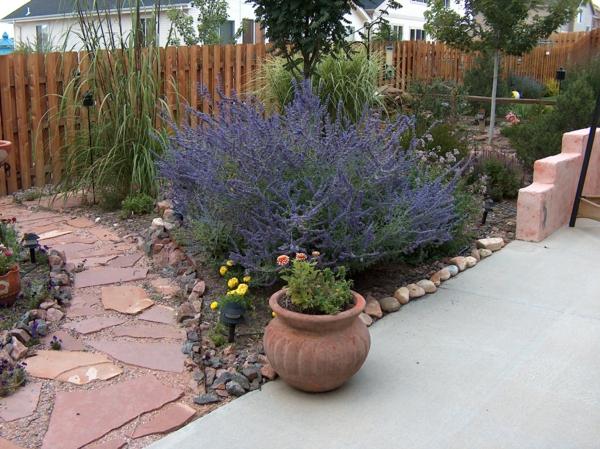 pflegeleichte Pflanzen Blumen Gartenbau Tipps