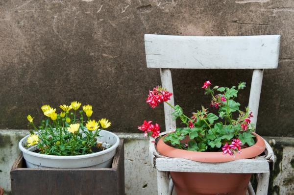 upcycling ideen garten alte stühle pflanzenbehälter umwandeln
