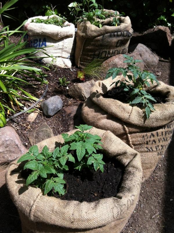 upcycling ideen garten kafeesäcke benutzen pflanzen beheimaten