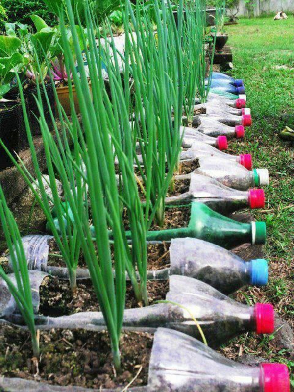 upcycling ideen garten plastikflaschen ideen