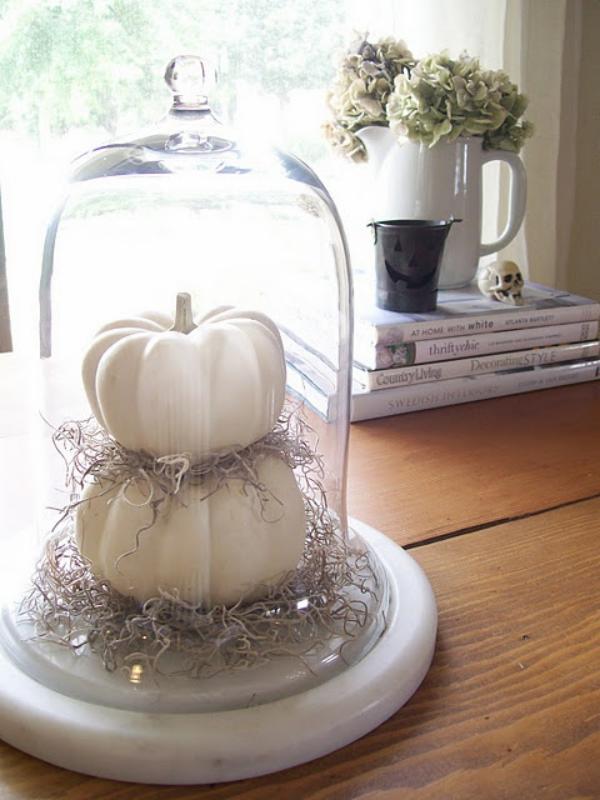Weiße Halloween Deko Ideen weiße Kürbisse stilvoll gestaltet unter Glasdeckel