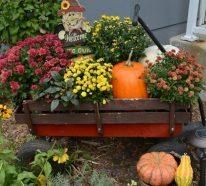 Herbstdeko Garten – 26 Ideen, wie Sie den Außenbereich aufpeppen