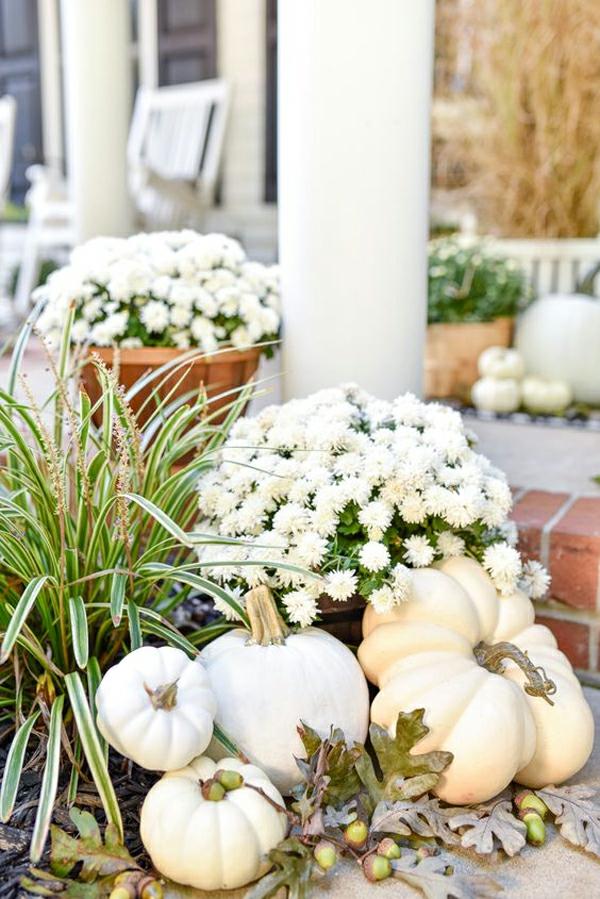 herbstdeko garten weiße kürbisse weiße chrysanthemen