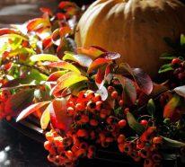 Herbstdeko mit Hagebutten für frische und farbenfrohe Herbststimmung