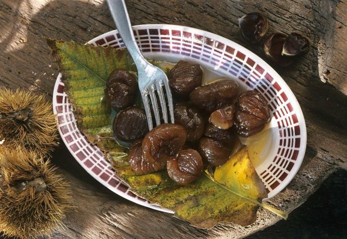 maronen rezepte kandierte maronen und kuerbis gericht