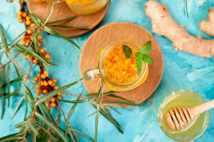 sanddorn rezepte gesund und koestlich